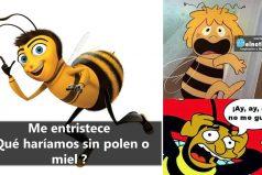Las abejas podrían desaparecer ¡3 razones!