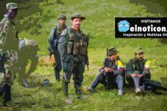 La excarcelación de guerrilleros y la verificación de las zonas veredales por parte de la ONU, las noticias de hoy