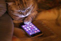 Ahora tú y tu familia pueden manejar parte de su vida desde el celular. ¡Una maravilla!