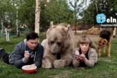 Una pareja rusa tiene como mascota un oso pardo ¿Debería estar en su habitad natural?