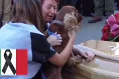 ¡CONMOVEDOR! Así fue como este perro le dio el último adiós a su dueño fallecido en el terremoto