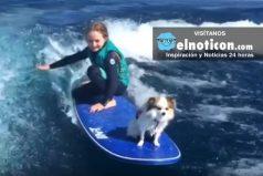 Conoce al increíble perro que hace surf con una niña