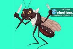5 razones por las que te pican los mosquitos más que a los otros ¡INQUIETANTE!