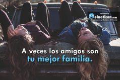A veces los amigos son tu mejor familia