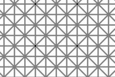 La ilusión óptica de los puntos negros que está causando furor en internet