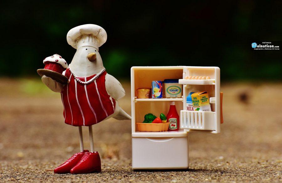 5 consejos para hacer buen uso de tu refrigerador ¿Será que los cumples?