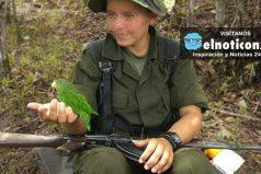 Así se realizará la salida de menores de edad de las filas de las Farc ¡No más menores en la guerra!