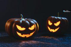 Estas son las 5 ideas más curiosas para que decores en Halloween