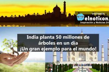 India es un ejemplo de sostenibilidad y cuidado del medioambiente por sembrar 50 millones de árboles