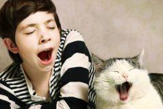 ¿Por qué bostezar es tan contagioso?