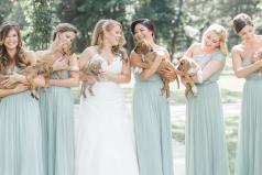 Novia decidió que en vez de arreglos florales hubiesen perritos rescatados en su boda y fue perfecto