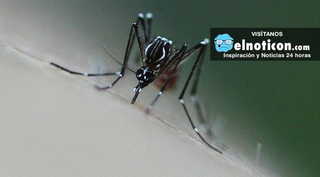 Tome precauciones si va a viajar a Florida, los casos del Zika aumentaron