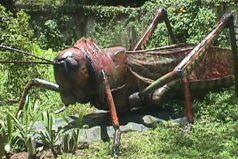 10 Criaturas prehistóricas increíbles ¡Wow!