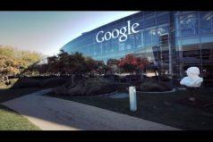 Las curiosidades que no sabías de Google ¡Puedes llevar a tu mascota al trabajo!