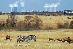 El aire contaminado está matando más gente en África que la desnutrición o el agua no potable