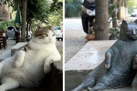 Hablemos del relajado y famoso gato inmortalizado con su propia estatua en su lugar favorito