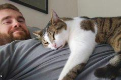 Espor esto que los gatos adoran dormir encima delas personas