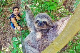 Las 20 Selfies más fabulosas de este año