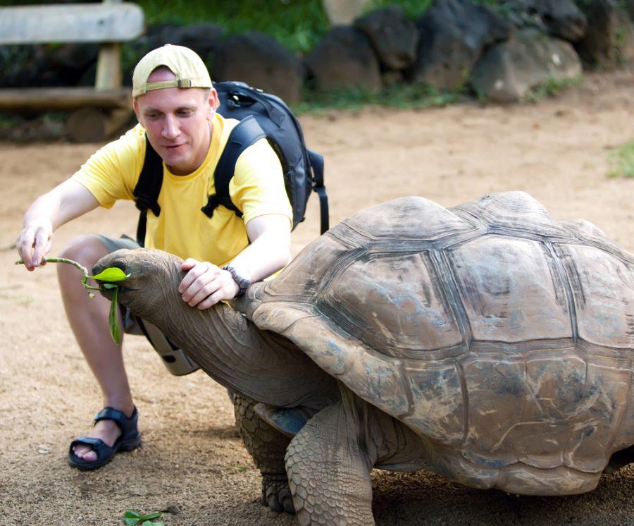 Un hombre que aprendió a ser paciente con su hermosa tortuga
