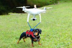 ¿Cuánto puede cargar un drone? Estos youtubers trataron de averiguarlo de la manera más divertida