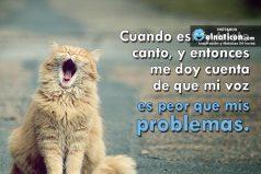 Cuando estoy triste canto, y entonces me doy cuenta de que mi voz es peor que mis problemas