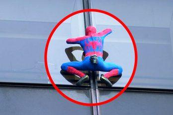 ¡Spiderman sí existe… y no solo uno! Conoce a personas reales capaces de trepar paredes sin ayuda
