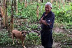 La conmovedora historia del viejito en Costa Rica que se negó a abandonar a sus perros a merced del huracán Otto
