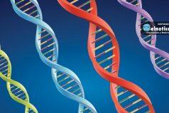 Cambridge premia la investigación sobre el cáncer de un joven sevillano de 27 años