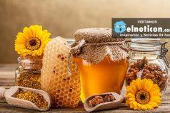 ¿Sabes cuántas flores debe visitar una abeja para producir un kilo de miel? ¡sorprendente!