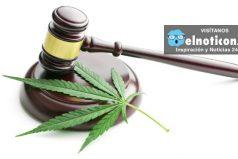 Tres Estados de EE. UU votaron para legalizar la marihuana