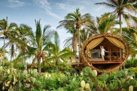 ¿Vivirías en una casa en un árbol para cuidar el medio ambiente?