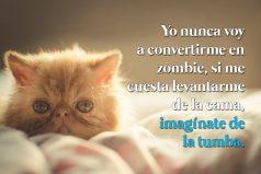 Yo nunca me voy a convertir en zombie…