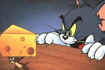¿Eres amante del queso? ¡Vas a quedar enloquecido con esto!