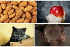 8 cosas que no sabías hace un minuto, ¡quedarás de infarto!