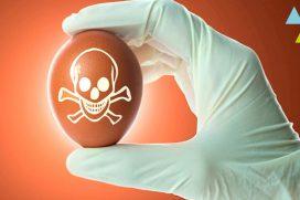 Cómo puedes evitar las intoxicaciones alimentarias, ¡depende de ti!