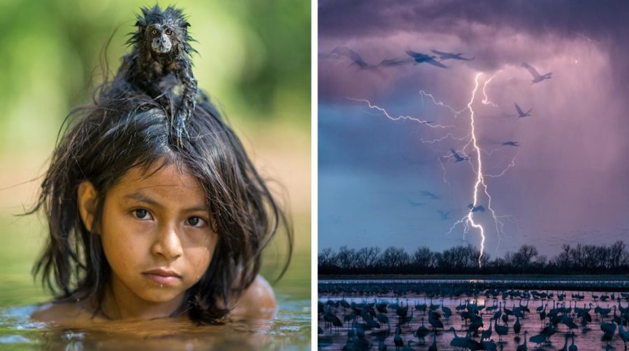 26 fotografías seleccionadas por National Geographic como las mejores de este 2016