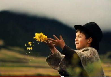 ¿Crees que la riqueza colombiana es envidiable?, ¡6 razones que no sabías!