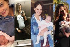 2016: ¡El año de los bebés y las embarazadas!