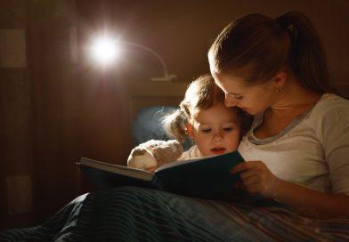 Las bibliotecas más inolvidables del mundo entero, ¡tu hijo podrá disfrutar de una YA!