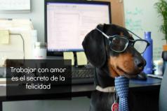 Trabajar con amor es el secreto de la felicidad