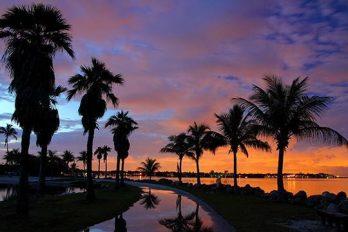 ¿Te gusta Miami? te mostramos las mejores playas