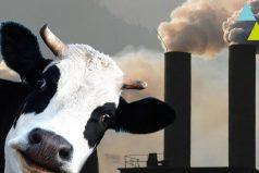 ¿Sabes cuánto contamina tu comida? ¡Quedarás con la boca abierta!