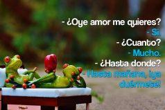 ¿Oye amor me quieres?…