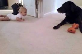 No sabrás que te enternecerá más: el primer gateo de este bebé o el ánimo de su mejor amigo. ¡Simplemente hermoso!