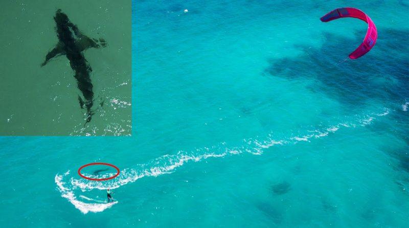 Kitesurfing-big-white-shark-turning-around-me-