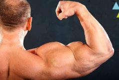Lo que no sabías de los músculos ¡y deberías!