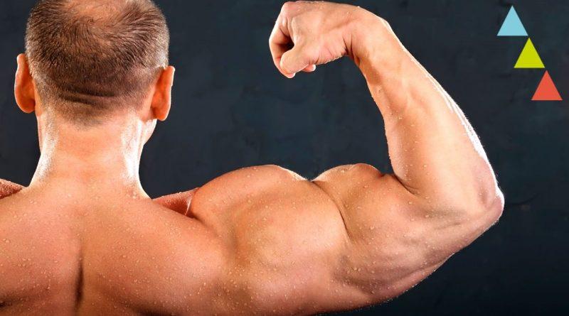 Lo-que-no-sabías-de-los-músculos-¡y-deberías