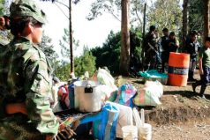 Más de 4 mil guerrilleros de las Farc se movilizan hacia las zonas veredales en el país