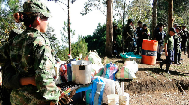 Más de 4 mil guerrilleros se movilizan hacia las zonas veredales en el país