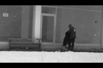 ¡Qué bondad! Este hombre alimentó y le regaló su chaqueta a un perro callejero en plena nevada. ¡Ser humano en estado puro!